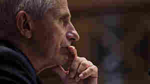 Fauci Says Current Vaccines Will Stand Up To The Delta Variant