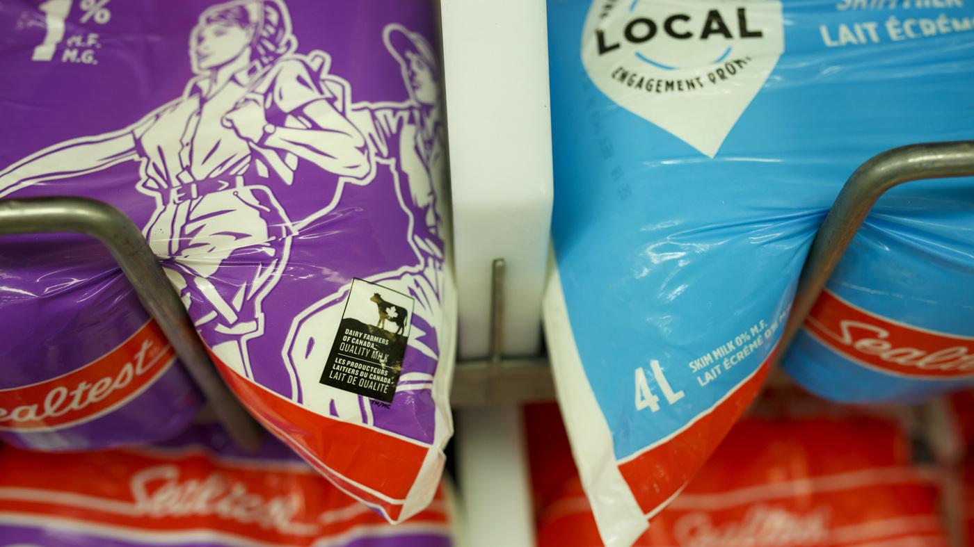 Of Memestocks and Milk Bags