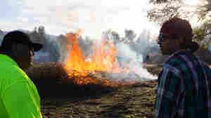 Managing Wildfire Through Cultural Burns