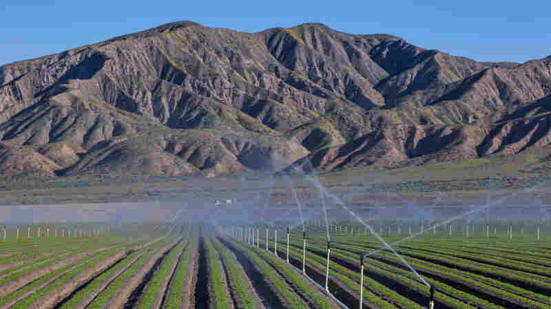 The Great California Groundwater Grab
