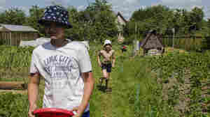 The Dacha Is Russia's Summer Cure For Urban Life