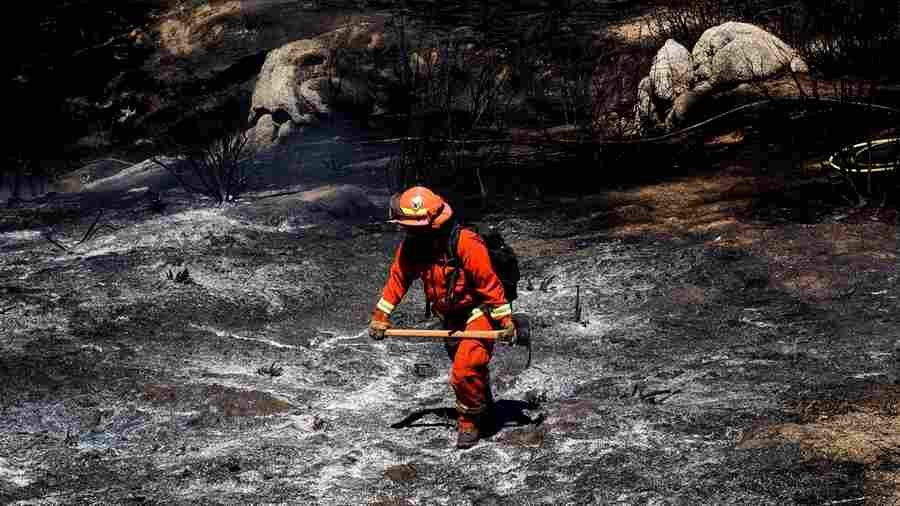 Given The Choice Between Prison Life And Fighting Wildfires, These Women Chose Fire