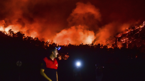 Wildfires Are Driving People Out Of Turkish Vacation Spots