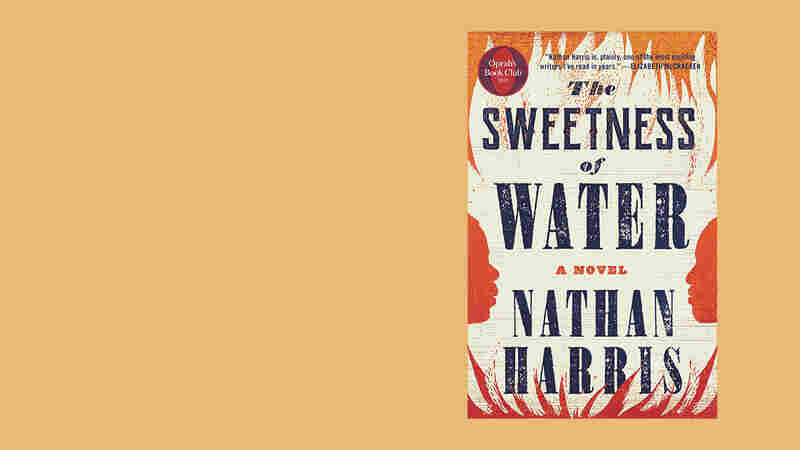 Oprah Picked It, So Did Obama — Why This Novel Is THE Summer Book