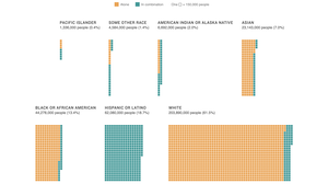 What The New Census Data Shows About Race Depends On How You Look At It
