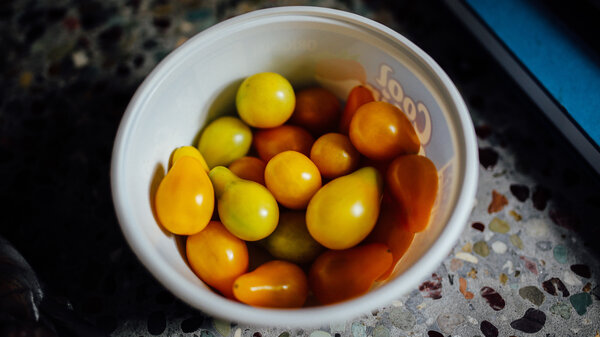 A neighbor delivered yellow cherry tomatoes from his garden to Lori Guadagno. She saw it as a sign from her brother since his home in California was filled with tomato vines.