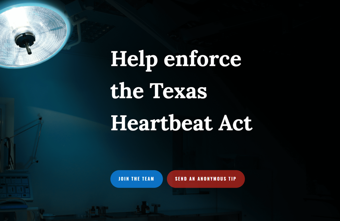 GoDaddy Is Booting A Site That Sought Anonymous Tips About Texas Abortions
