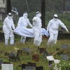 The Death Of A 12-Year-Old Boy Sparks Worries Of A Nipah Virus Outbreak In India
