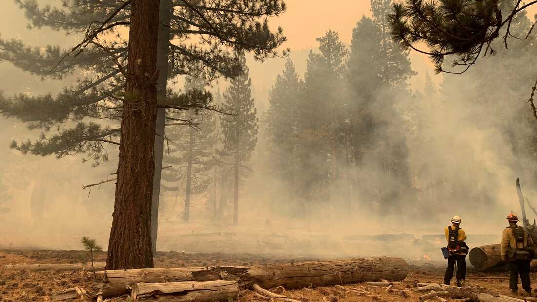 Biden visits Wildfire Center, congratulates firefighters who 'saved Lake Tahoe': NPR
