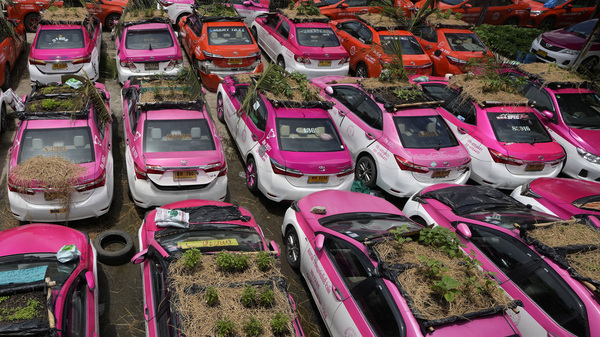 """Miniature gardens are planted on the rooftops of unused taxis parked in Bangkok, Thailand, Thursday, Sept. 16, 2021. Taxi fleets in Thailand are giving new meaning to the term """"rooftop garden."""""""