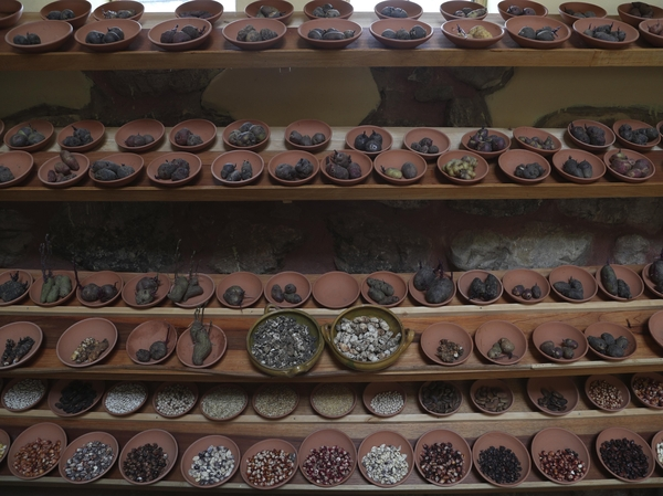 """Different types of potatoes seed are seen displayed in """"Parque de la Papa"""" or Potato Park, in Pisac, Peru. One hundred and fifty type of tubers from the Sacred Valley highlands are native to Peru."""