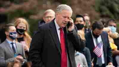 Jan. 6 Panel Subpoenas Former Trump Officials, Including Mark Meadows, Steve Bannon