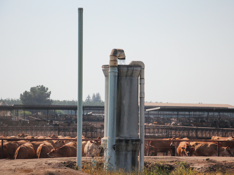 In a farming area east of Tulare, Calif., fields of corn and dairy herds depend on water from wells like this one. The state is now limiting the use of this groundwater.