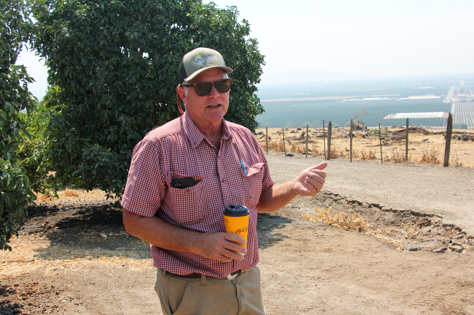 David Roberts grows citrus crops on the eastern side of the Central Valley, near Woodlake, Calif. Some of his orchards depend entirely on water that he pumps from the aquifer.