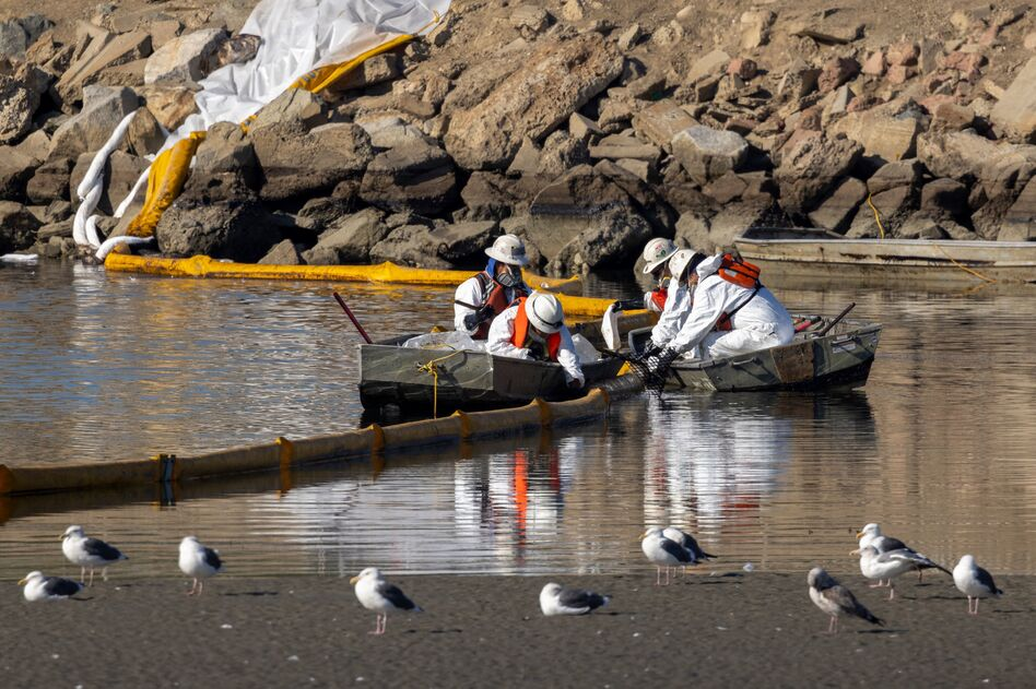 Workers in boats try to clean up the oil floating near gulls in the Talbert Marsh as a 3,000-barrel oil spill, about 126,000 gallons, reaches the shore and sensitive wildlife habitats in Newport Beach, Calif., on Sunday.