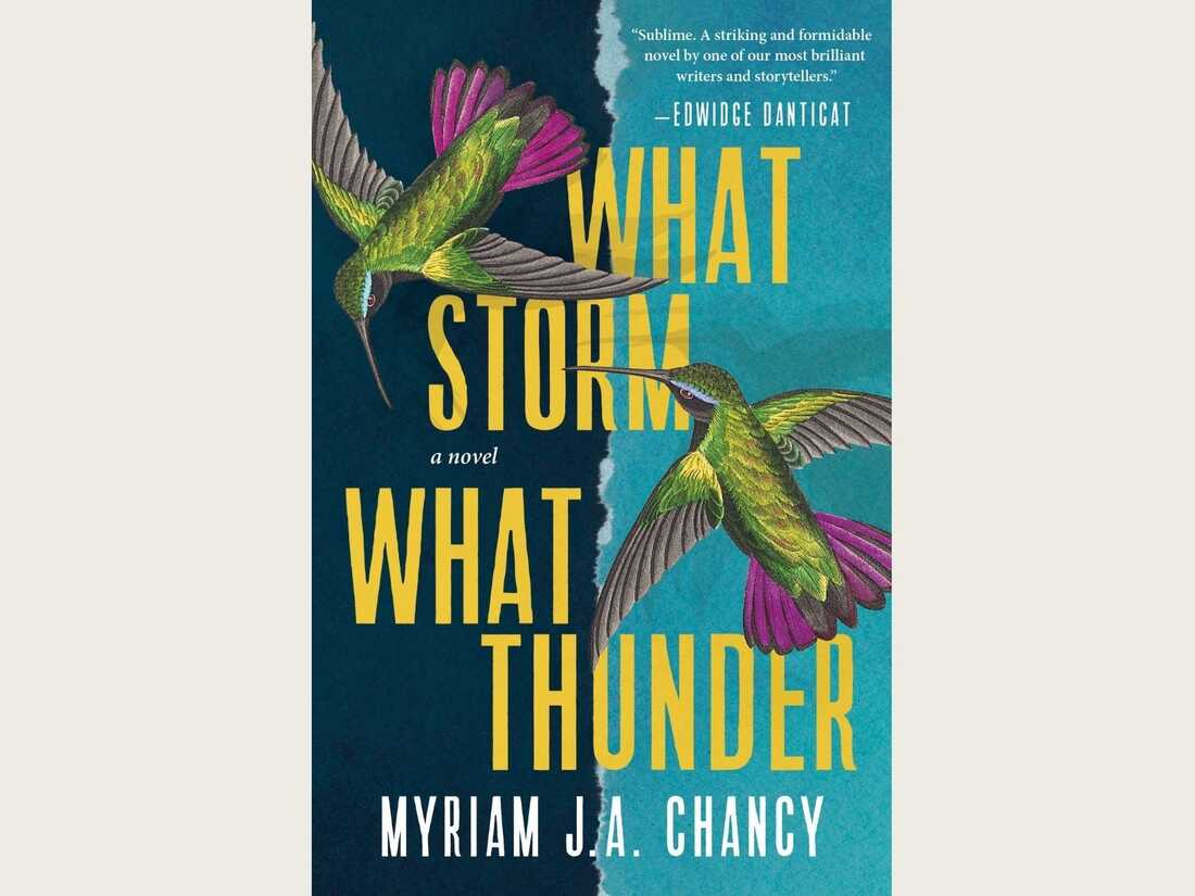 the cover for What Storm, What Thunder