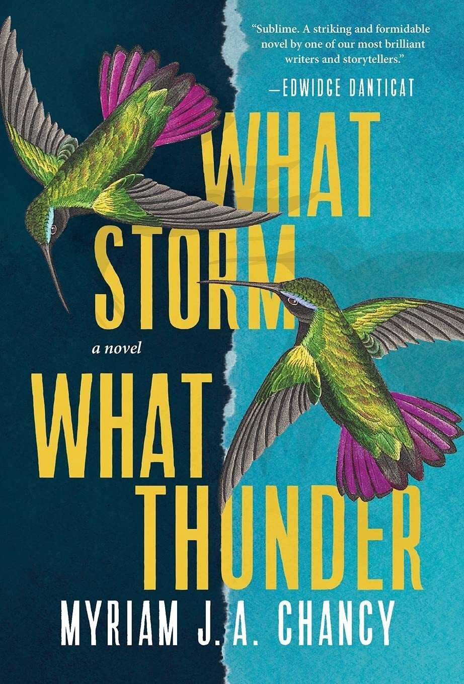 What Storm, What Thunder, by Myriam J.A. Chancy