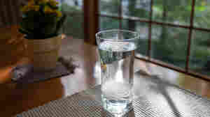 Coronavirus FAQ: Why do so many folks say to drink lots of water before your vaccine?
