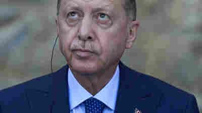 Turkey's Erdogan orders the removal of 10 ambassadors, including U.S. envoy