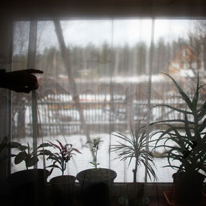 Made up of dilapidated wooden houses set along snow-covered dirt streets, Sagra lies near Russia's Ural Mountains, the natural border between Europe and Asia. Sagra is not far from the Siberian city of Yekaterinburg. Here, plants stay warm inside, despite subzero temperatures outside. (David Gilkey/NPR)