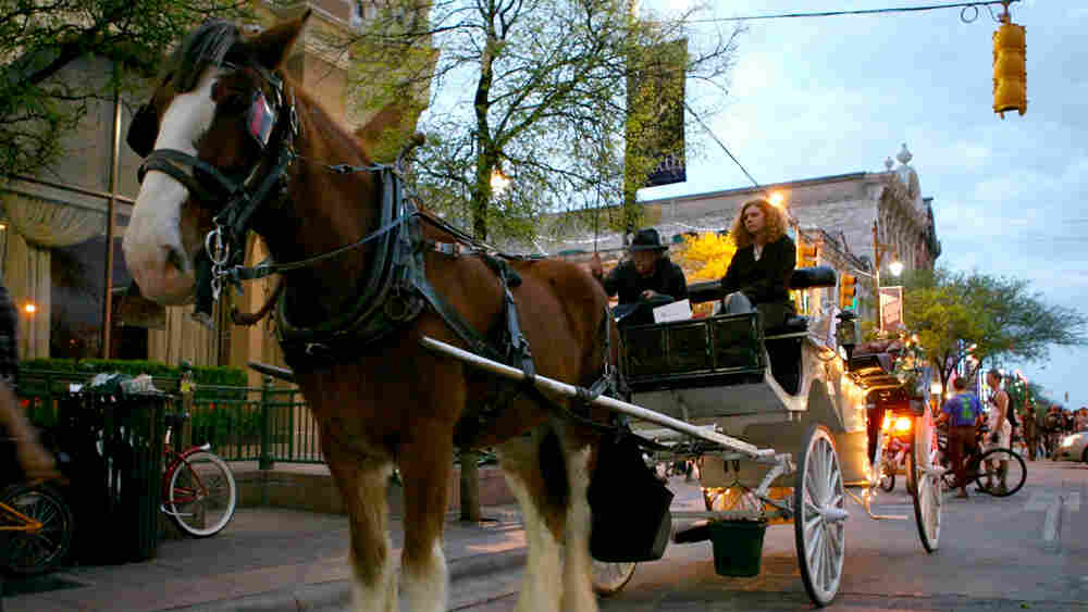 A horse-drawn carriage transports concert-goers at SXSW in Austin, Texas.