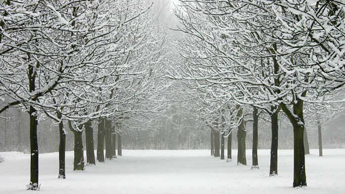 What Music Fuels Your Winter Blahs?