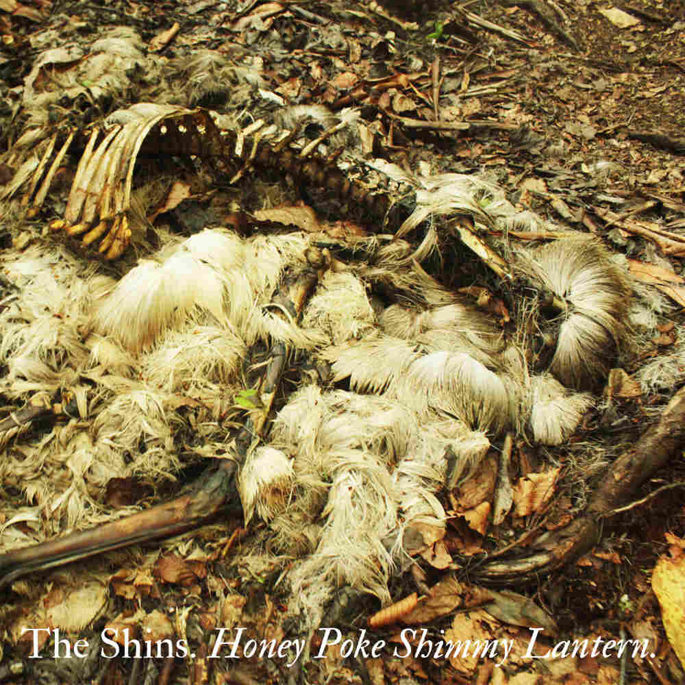 Fake cover for The Shins' 'Honey Poke Shimmy Lantern.'