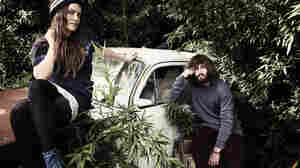 Angus And Julia Stone, Recorded Live In Concert