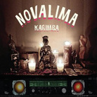 Cover for Karimba