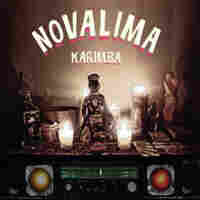 Cover for Karimba