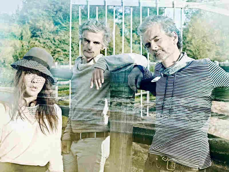 Blonde Redhead embraces the electronics and an ethereal mood on their latest album Penny Sparkle.