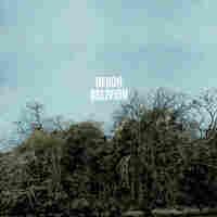 Cover for Heron Oblivion