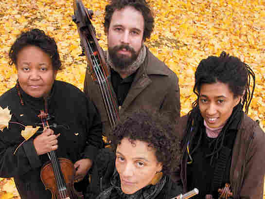Nicole Mitchell's first album with the Black Earth Strings is 'Renegades.'