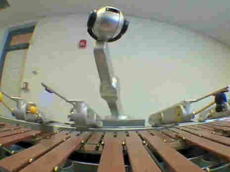 Shimon jamming on the marimba; courtesy of Georgia Tech Music Technology Center