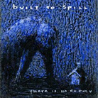 cover for built to spill