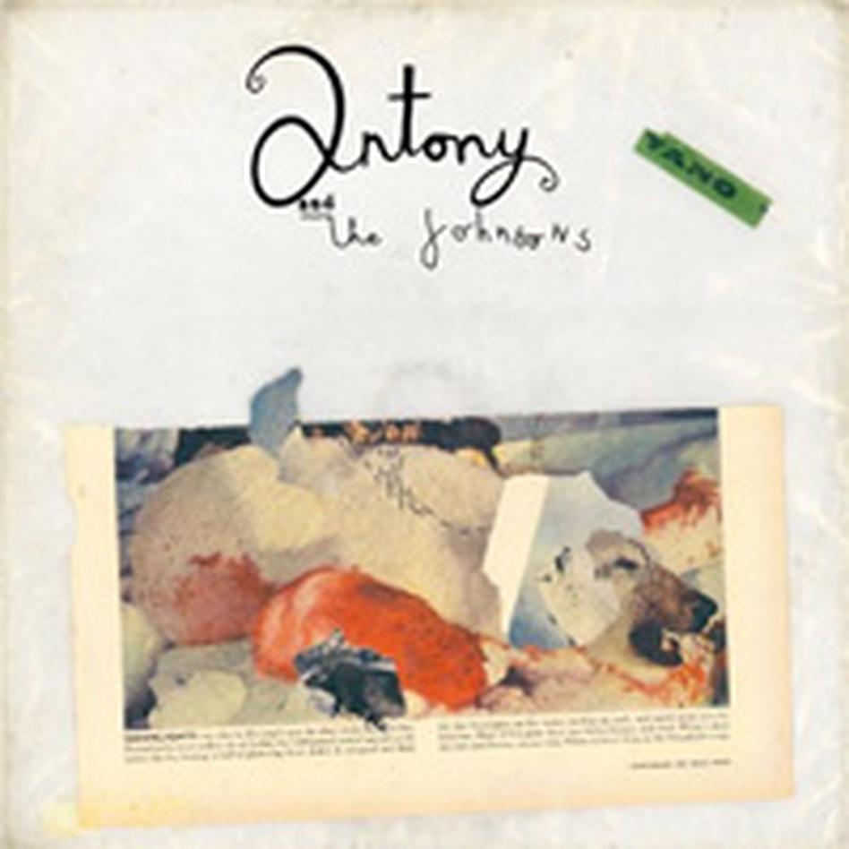 antony cover