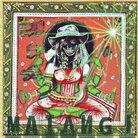 Cover for Matangi