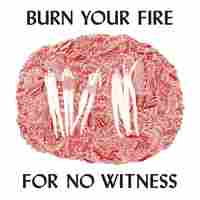 Cover for Burn Your Fire for No Witness