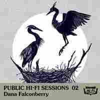 Cover for Public Hi-Fi Sessions 02
