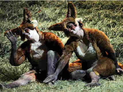 Fox and Vixen
