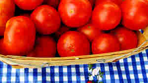 Alabama Tomatoes: Homegrown And On Your Honor