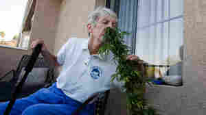 Pot Collective Sprouts In Retirement Community