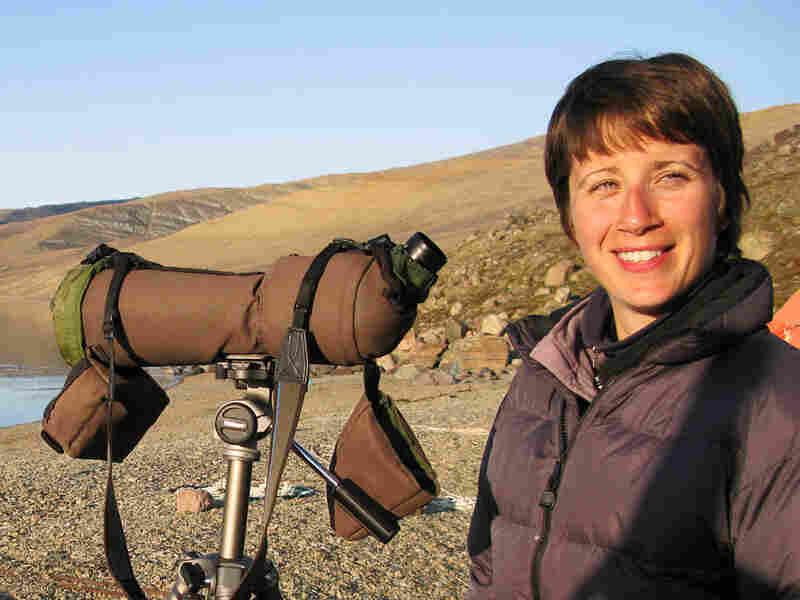 Narwhal biologist Kristin Laidre stands on the beach of a fjord near Qaanaaq, Greenland.