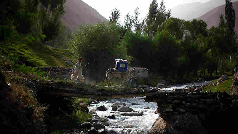 A boy and his donkey carry unused ballots across a stream.
