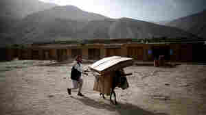 Donkeys Deliver The Vote To Rural Afghanistan