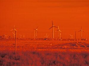 Windmills in la Muela area.