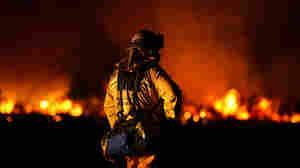 Photo Gallery: California Wildfires