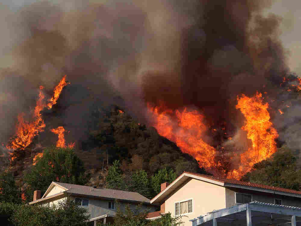 Flames from a backfire flare up in the hills behind homes in La Crescenta, Calif.