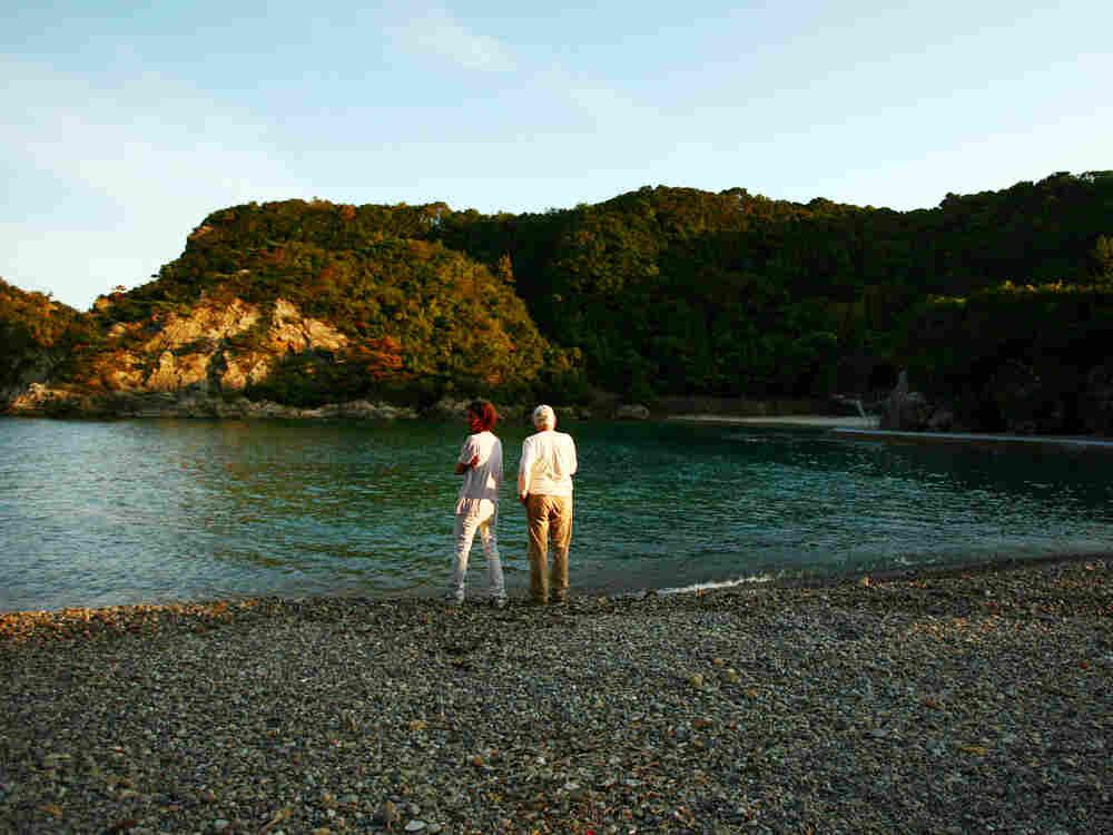 A cove where fishermen often kill dolphins in Taiji, Japan. Junji Kurokawa/AP