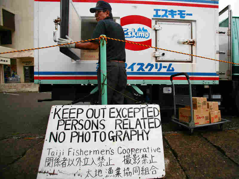 A signboard posted by Taiji Fishery Cooperative at a port in Taiji. Junji Kurokawa/AP
